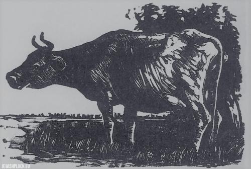 Fiszel Zylberberg, drzeworyt, Krowa (źródło: www.zchor.org)