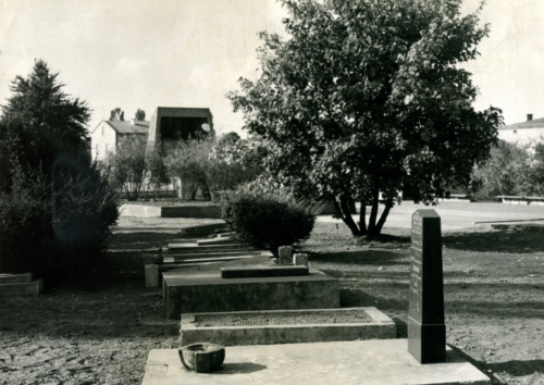 Jewish cemetery at Mickiewicza St. in Płock (from the collection of Lucjan Kot)