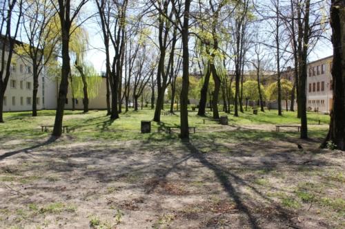 Teren cmentarza żydowskiego przy ul. 3 maja w Płocku (fot. P. Dąbrowski)